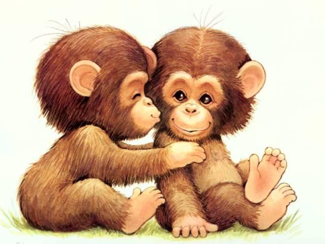 Tả con khỉ mà em từng quan sát